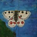 Friedhelm_Wolfrat-Mariposa 4