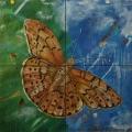 Friedhelm_Wolfrat-Mariposa 8