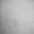 1_Friedhelm-Wolfrat_Titanweiss-105